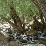 آبشار-پونه-زار-فریدونشهر-اصفهان (2)